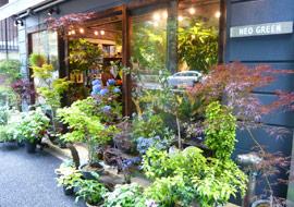 store_shibuya_1.jpg